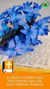 biblia-jfa-gratis-12